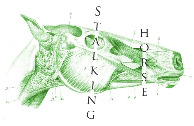 Stalking-Horse-Green-White-Text-Trim